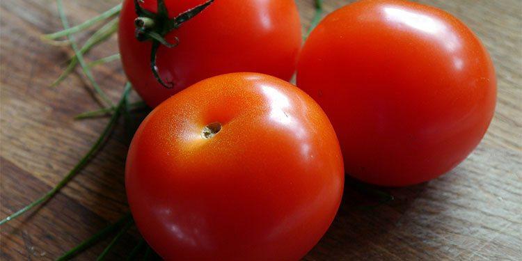 Gardening_0002_tomato-498721_1920