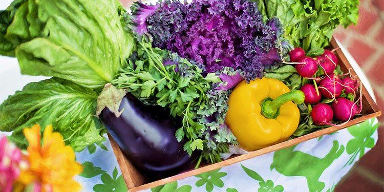 Gardening_0003_vegetables-790022_1920